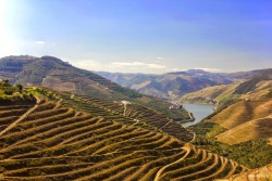 Douro Sublimado