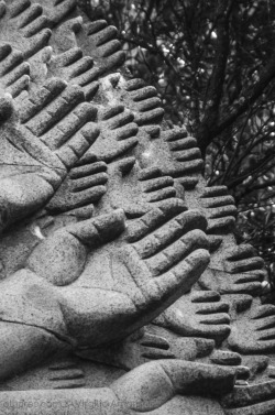 HANDS IN THE AIR - BUDDHA EDEN